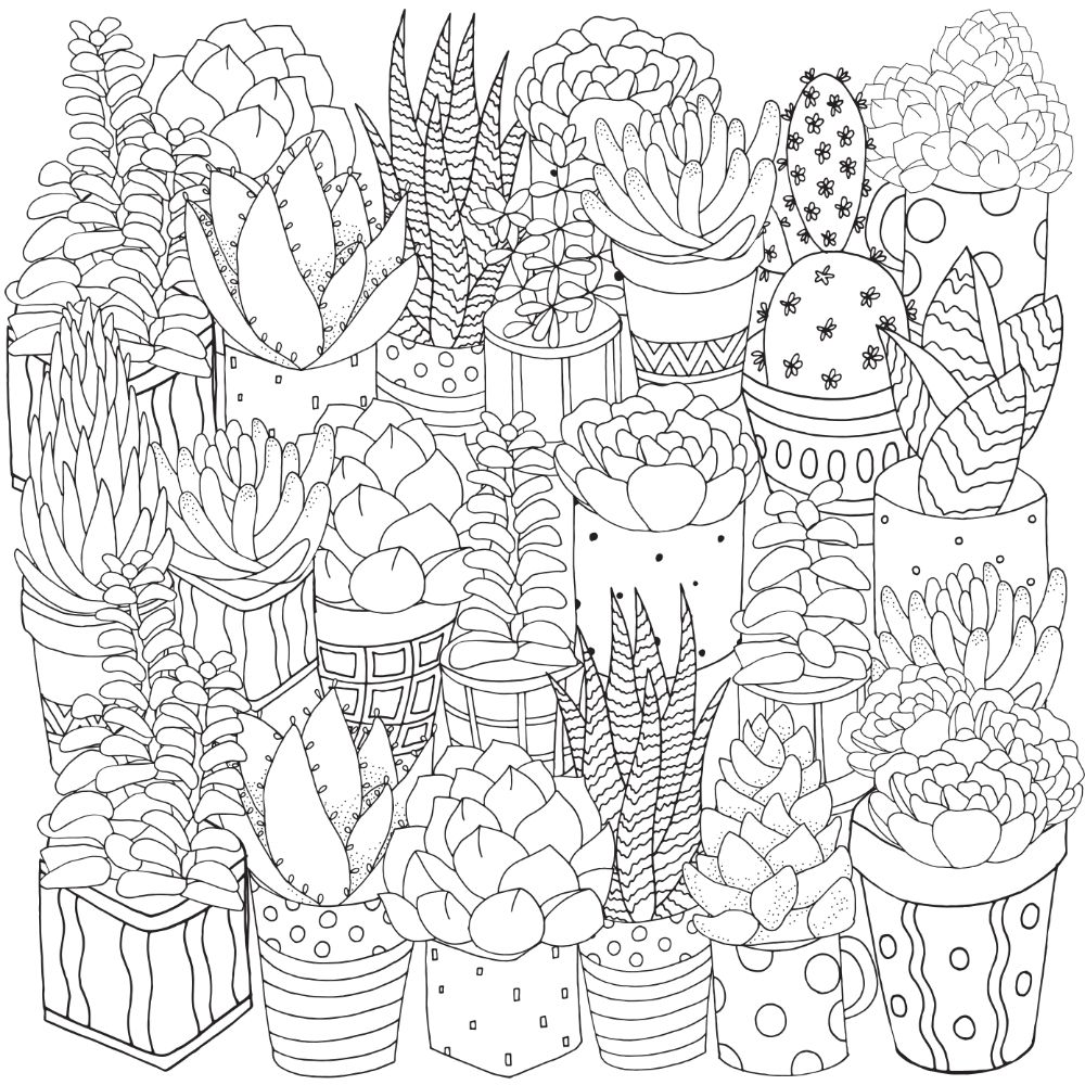 Free SUCCULENT Coloring Pages for Download (PDF)