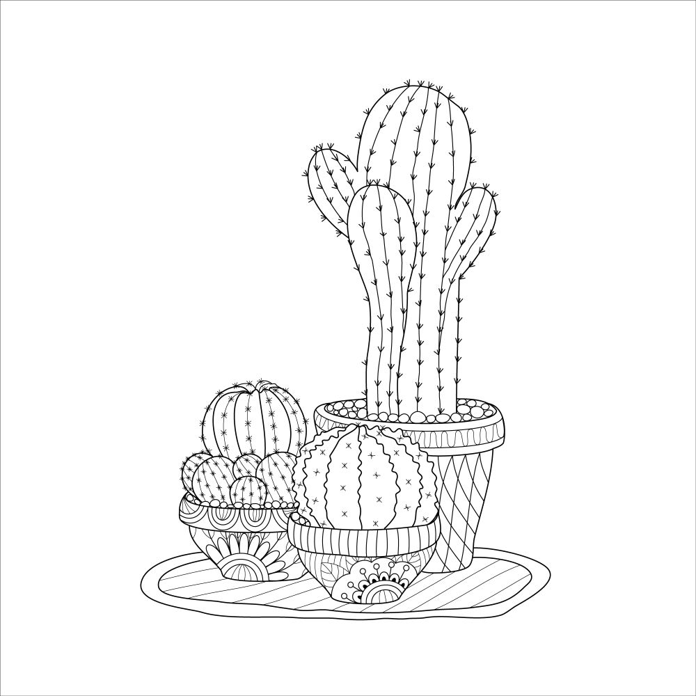 Hand-drawn succulent and cacti collection.