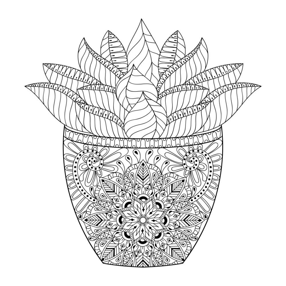 Beautiful succulent in a decorative pot.