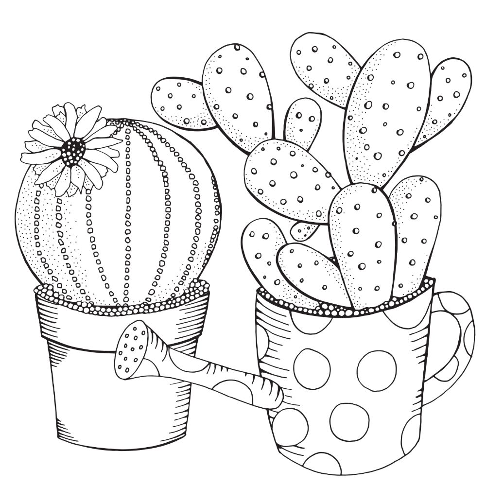 Succulent illustration with pot and watering can.