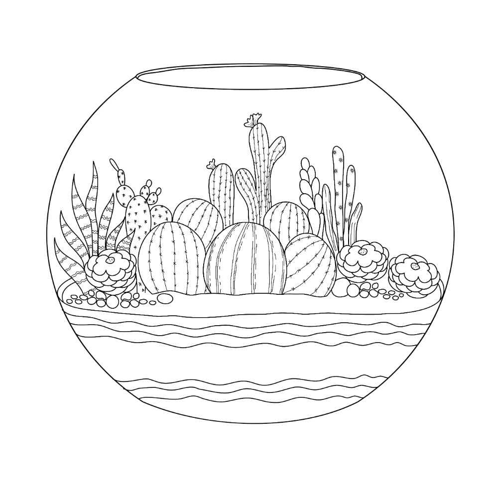 Succulents in a terrarium (illustration for coloring).