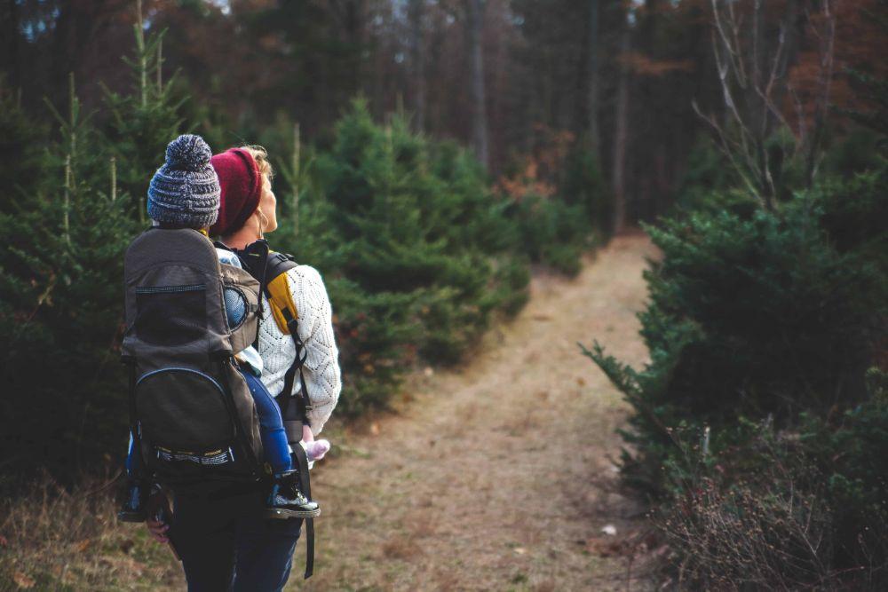 A Walk in Nature.