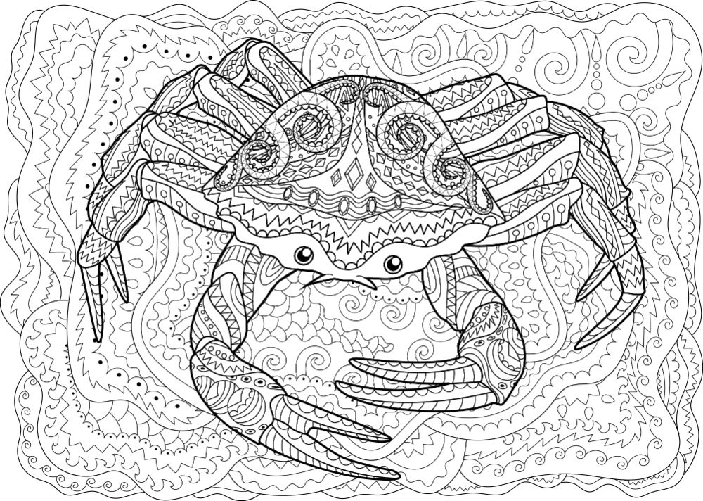 Free Crab Coloring Pages For Download Pdf Verbnow