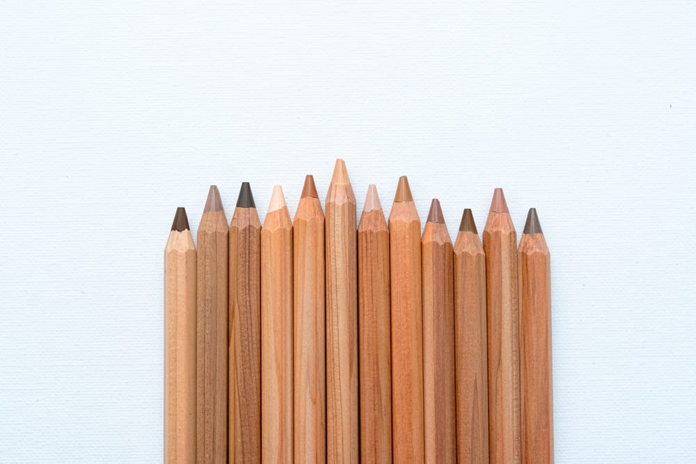 Various pencils of different shades on a blank canvas.