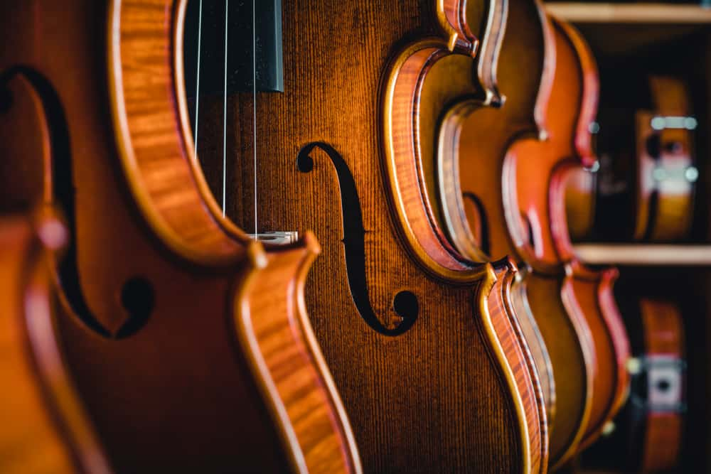 This is a close look at various violins on display at a store.