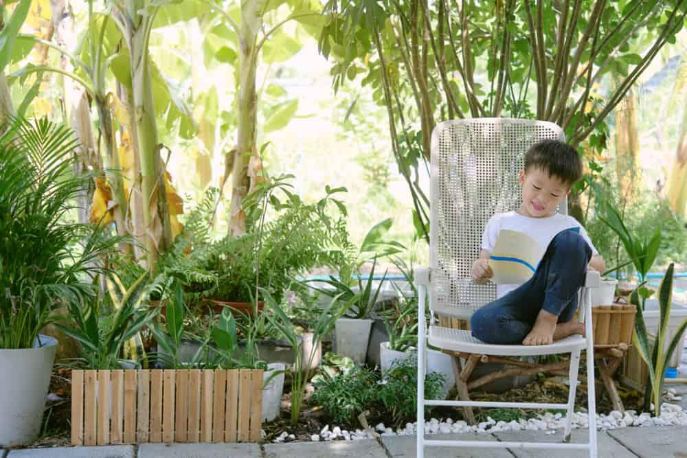 A boy reading a book at the backyard.