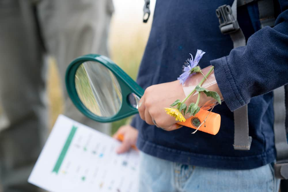 A close look at a kid with a magnifying glass on a scavenger hunt.