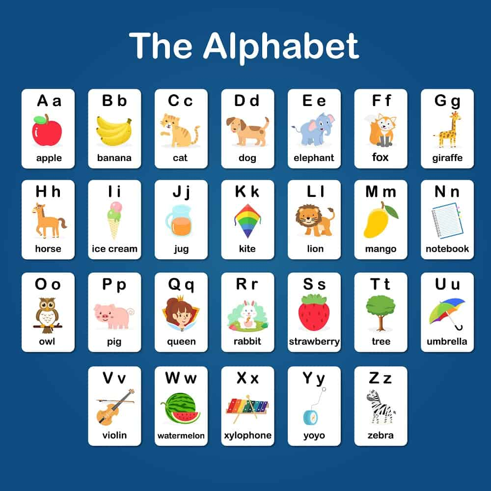 Alphabet flash cards with colorful pictures.