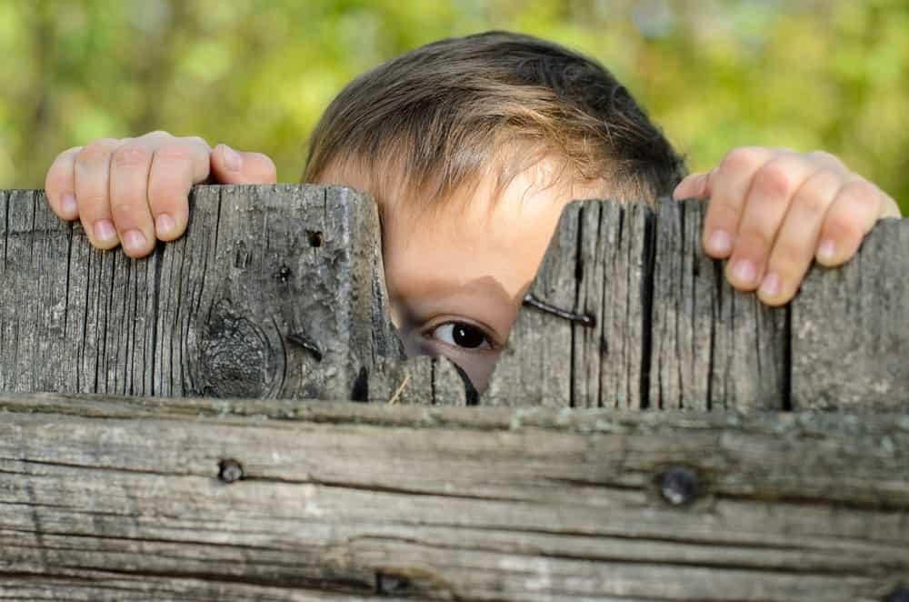 A boy peeking through the wooden fence.