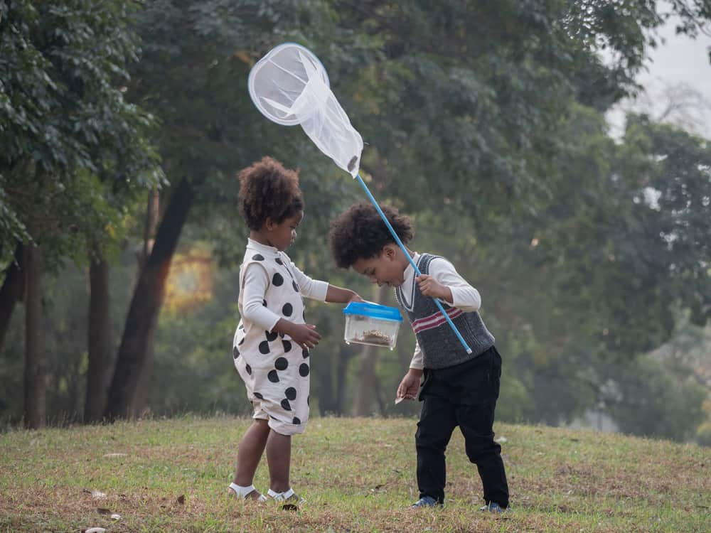 Siblings at the park catching bugs with a net.