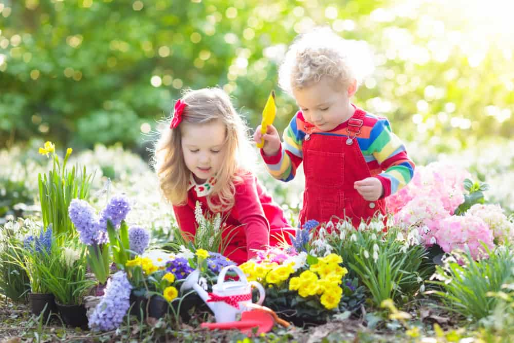Two kids taking care of the plants and flowers of the backyard.