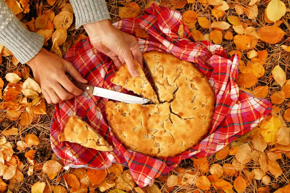 Woman slicing an apple pie on a red checkered towel and yellow autumn leaves.