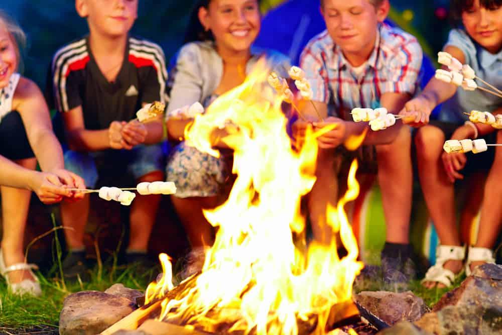 Kids roasting marshmallows on campfire.