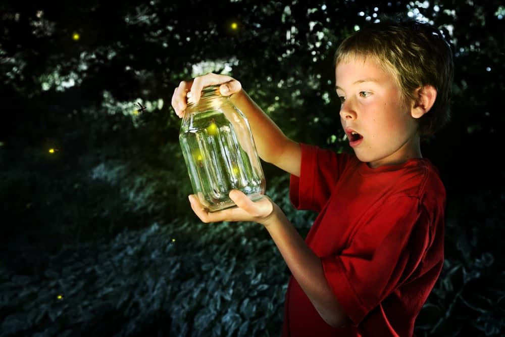 Boy holding a jar of fireflies.