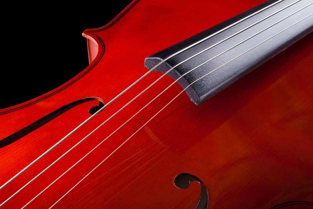 Closeup of cello strings.