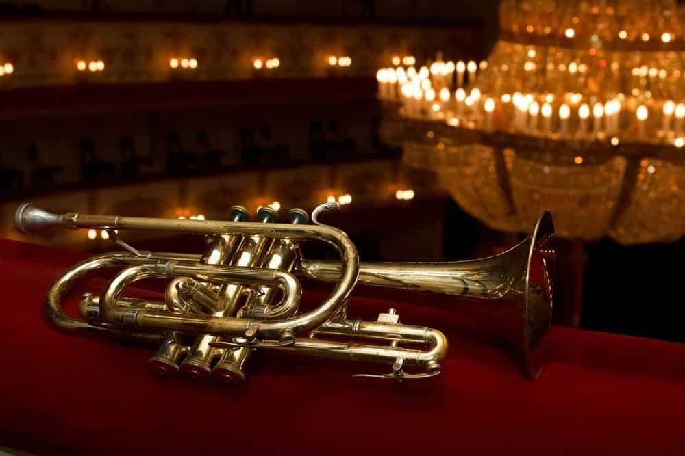 Cornet with chandelier as background.