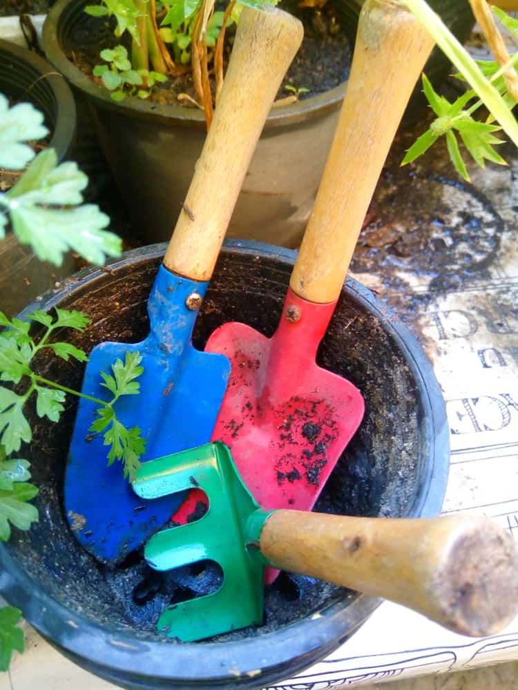 Colorful gardening tools in a bucket.