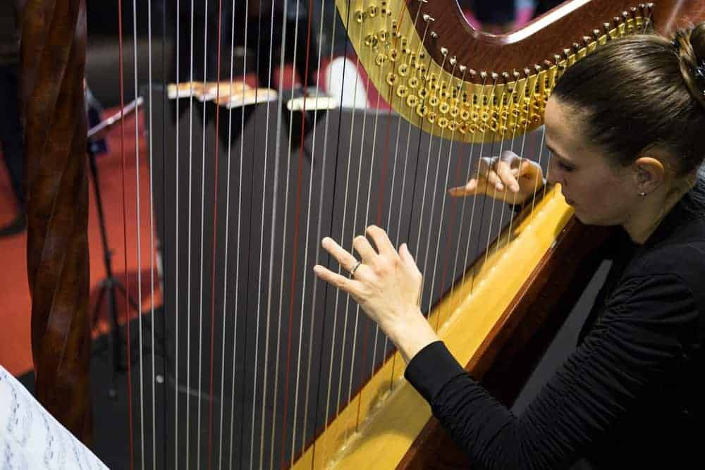 A member of an orchesta team is rehearsing for her harp performance.