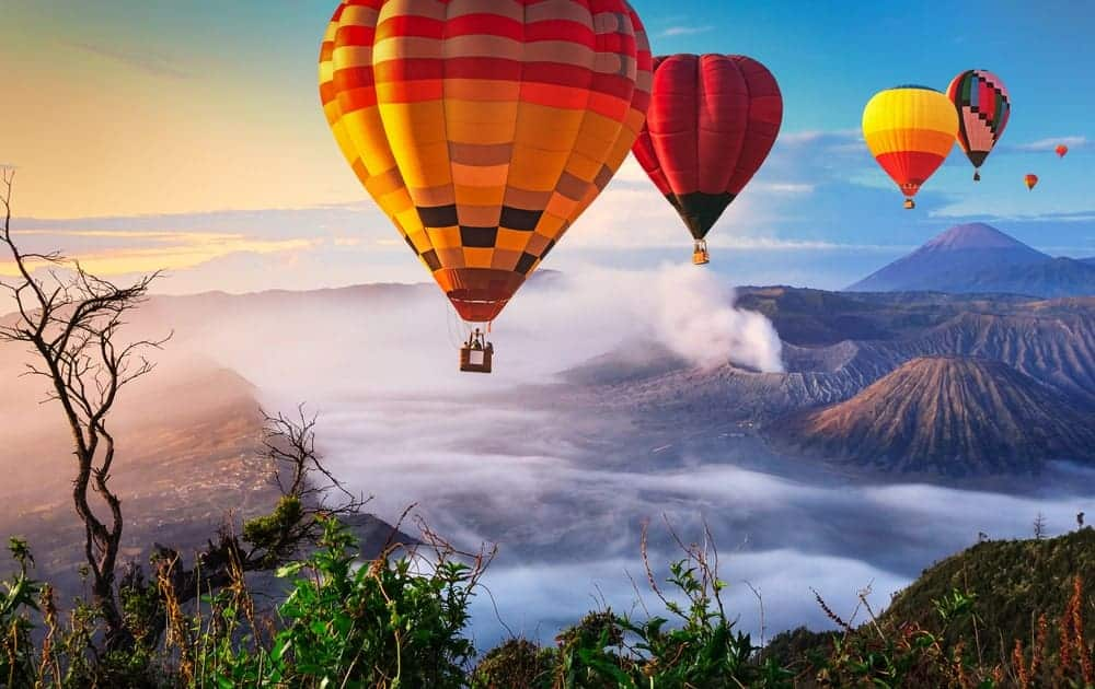 Hot air balloons over a scenic landscape.