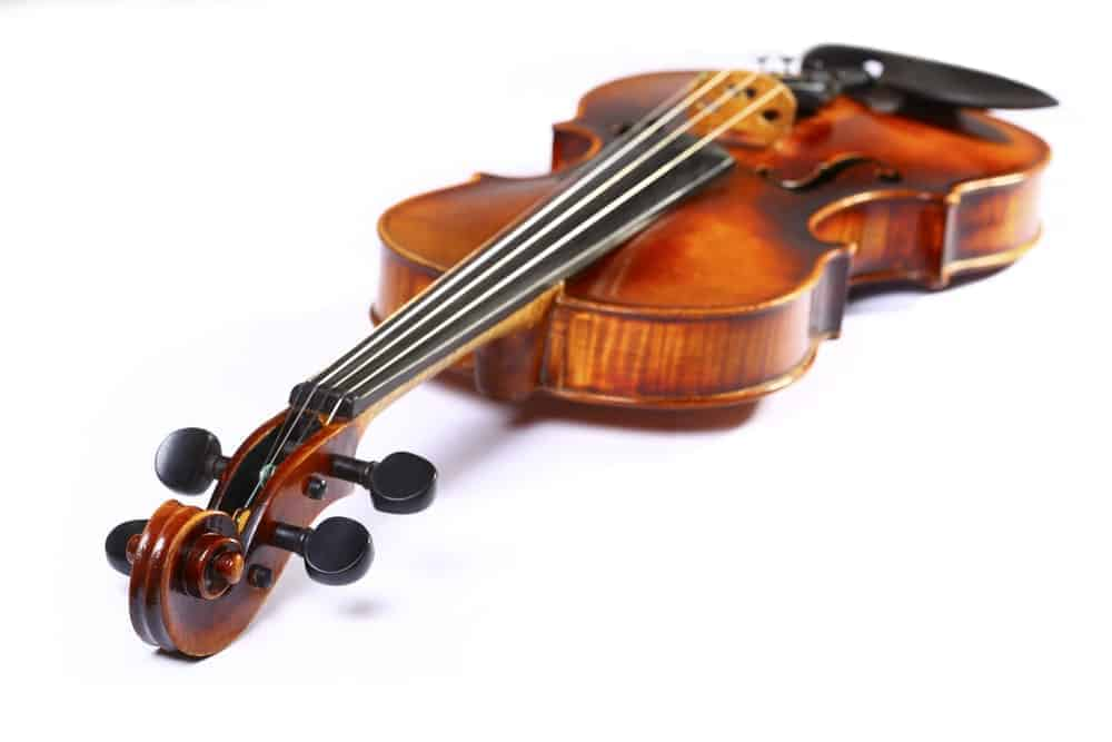 Cello made of maple.