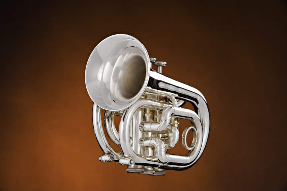 Pocket trumpet isolated on brown background.