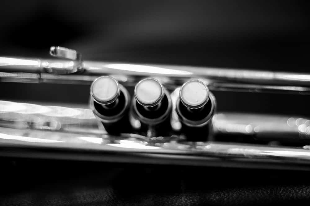 Three valves of a trumpet.