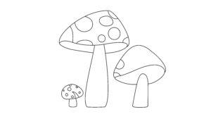 Mushroom Step 8