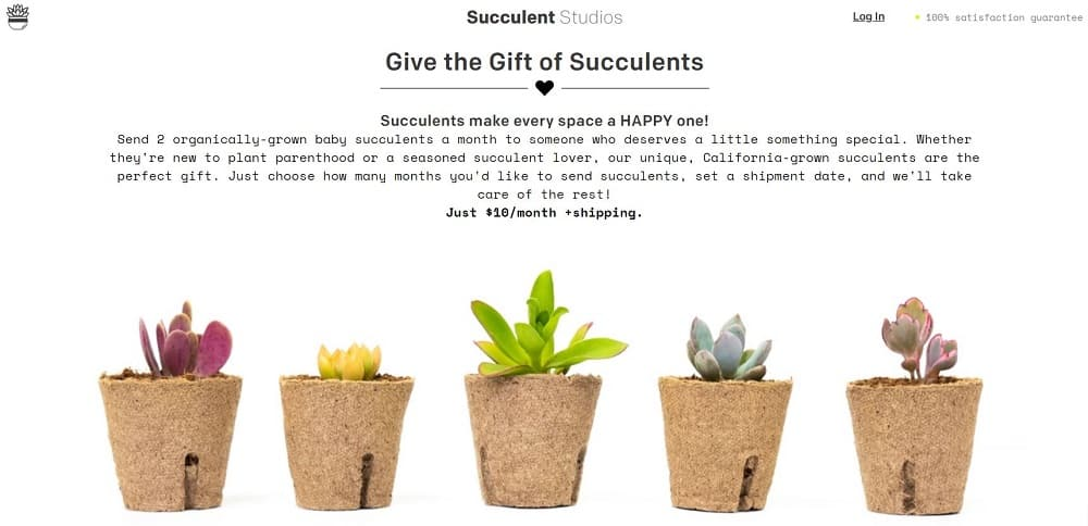 This is a screenshot of the Succulent Studio website homepage.